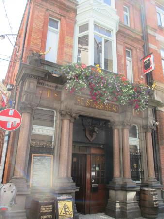 The Irish Folk Experience: Stag's Head pub for lunch