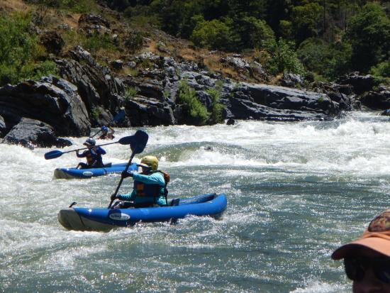 Momentum River Expeditions: Rogue River Running