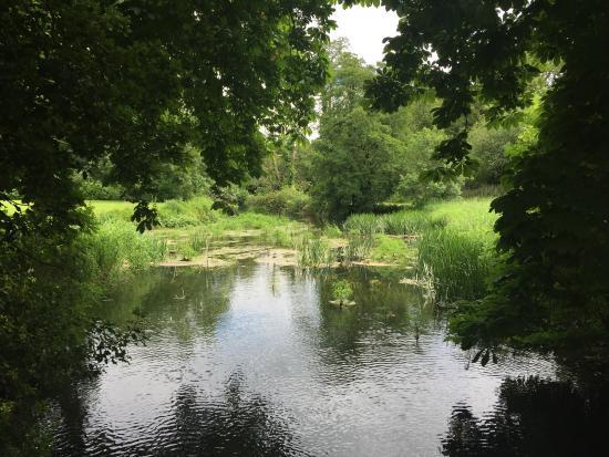 Doneraile Wildlife Park