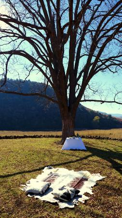 ZuluWaters Game Reserve: Picnic Lunch