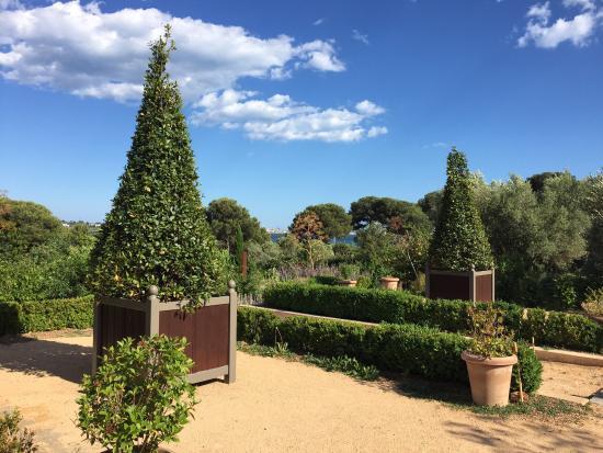 Jardin Antique Méditérranéen