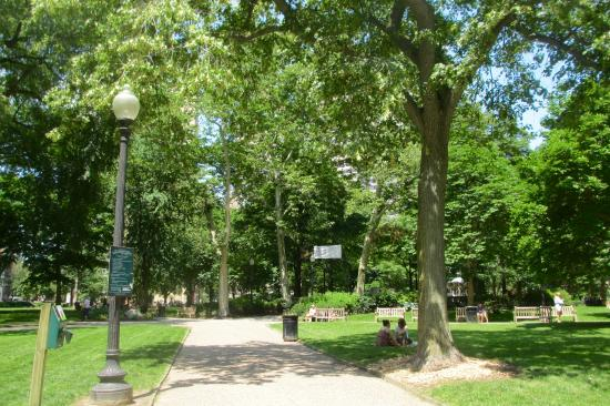Rittenhouse Square: Square on a hot June day