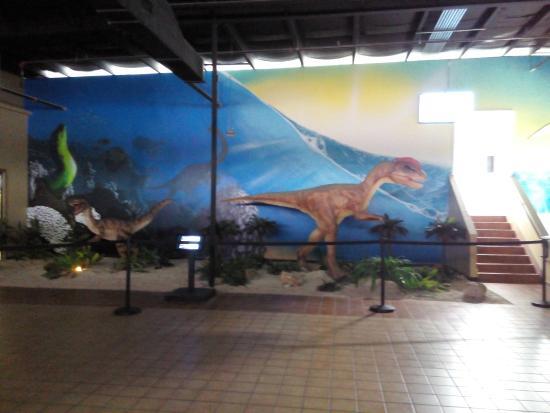 Feeding The Birds Picture Of San Antonio Aquarium San