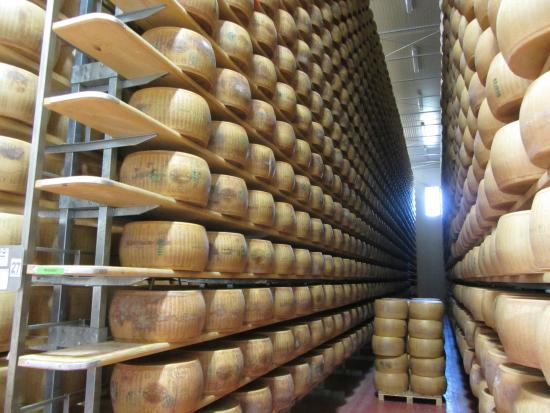 Emilia Delizia Food Tours : Parmigiano plant