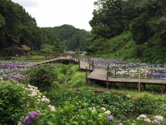Ninomiya Seseragi Park