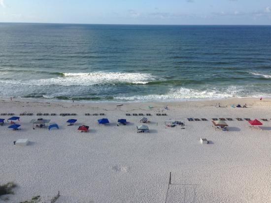 Bluewater Condo Orange Beach Reviews