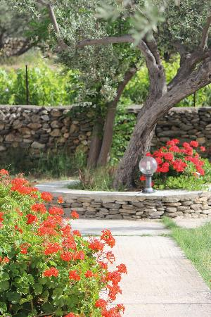 Areti Rooms : path to the driveway