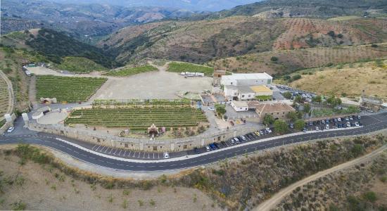 Murtas, Spanyolország: Centro temático del Vino BODEGA CUATRO VIENTOS