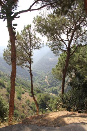 Qornet El Hamra, Líbano: The valley