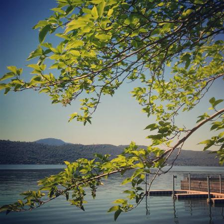 Clear Lake Cottages & Marina: View from the deck