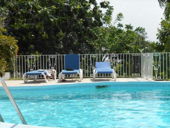 Palm View Guest House & Conference Center: pool lounging area