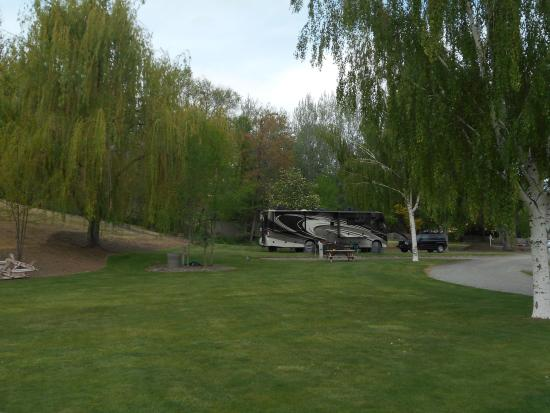 Fish House Inn and RV Park: View of the park.