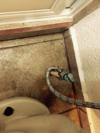 Hotel Barraco: Absolutamente sucio, FAVOR DE NO VENIR