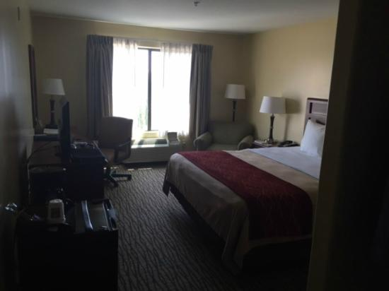 Comfort Inn Near FairPlex : view from the door