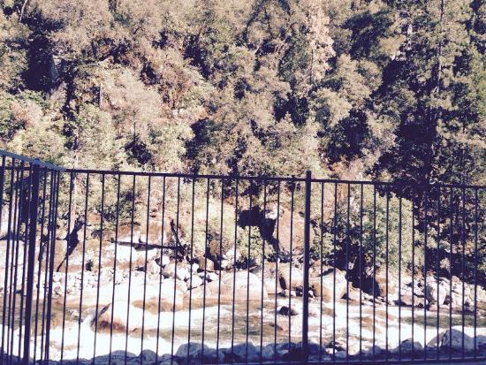 Yosemite View Lodge: photo3.jpg