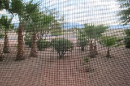 Saddle West Hotel, Casino and RV Resort: View