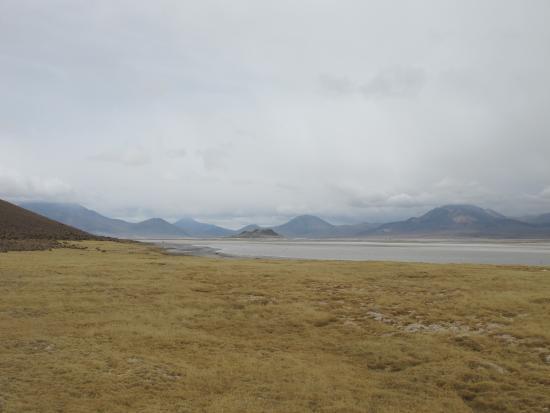 Salar de Surire : Соленое озеро в окружении гор