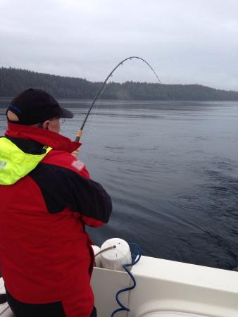 Leisure Suit Charters: Great day on the water today. Caught a large catch of Chinook for time of year. Great guide Stev
