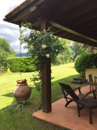 Agriturismo Petrognano: The patio and garden of our room (Apartment 2)