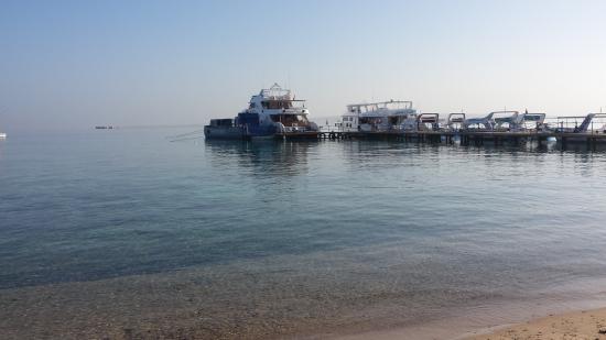 SEAWOLF - Divers: Anlegestelle an der Basis