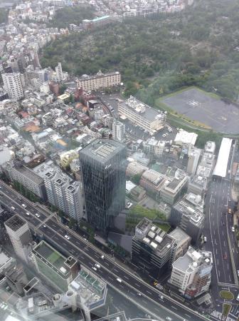 眼下に青山墓地 - Foto de Tokyo City View Observation Deck (Roppongihills), Minato - ...