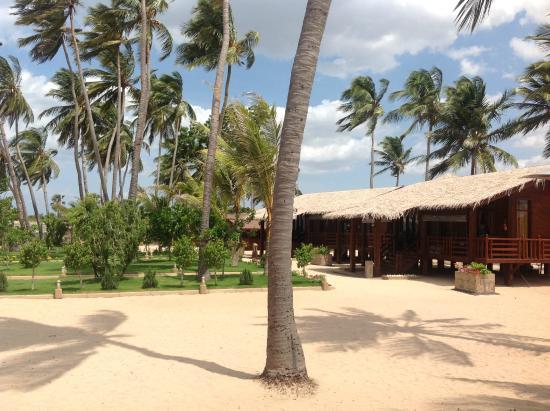 Nilaveli Beach Resort (Sri Lanka) - Hotel - anmeldelser - sammenligning af priser - TripAdvisor