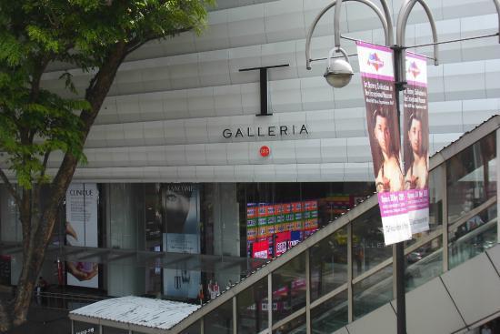 DFS Galleria at Scotts Walk: DFS ギャラリア スコッツウォーク1