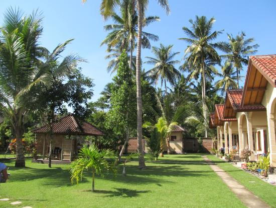 Yuli's Homestay : Garden with rooms