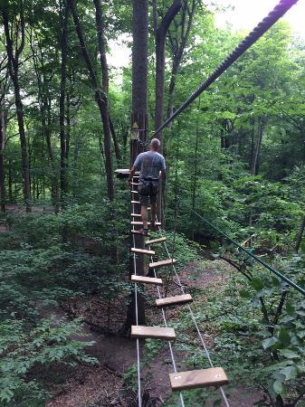 Go Ape Treetop Adventure Course: The Japanese Bridge