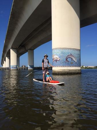 Three Brothers Boards Dolphin and Manatee Paddle Board Tours Photo