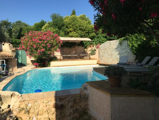 La Licorne Guest House: My view from breakfast - the pool at La Licorne