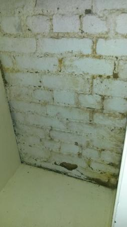 Clifton Court: Filthy hotel