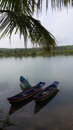 Riverview Villas: View from the gazebo