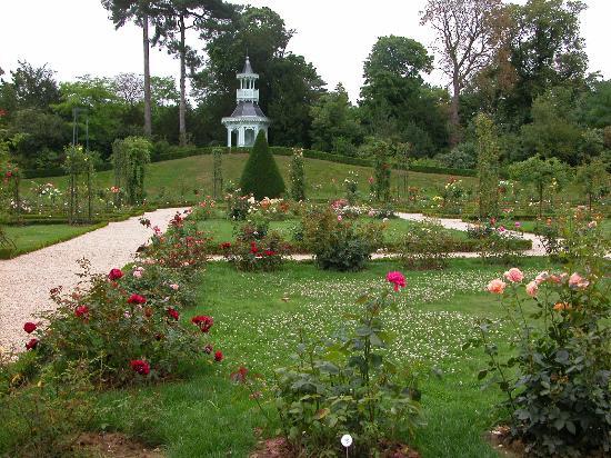Image Bois De Boulogne : Bois De Boulogne Paris