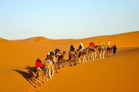 I Go Morocco