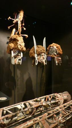 Musee d'histoire naturelle de La Rochelle : au delà du sacré