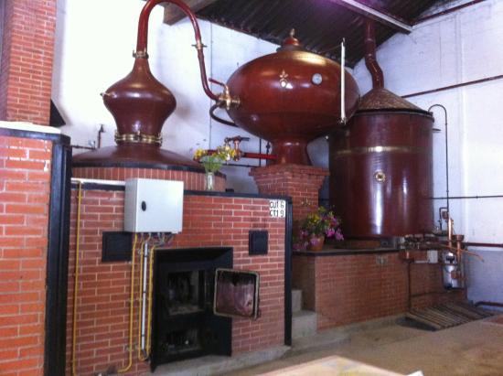 Raymond Bossis Cognac Distillery
