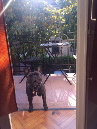 Principe Calaf B&B : Hercules en vacances chez Maria