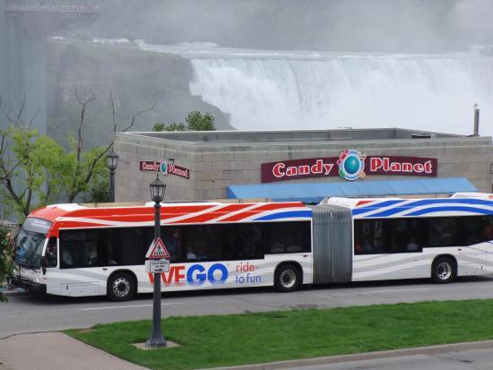 대중교통 버스