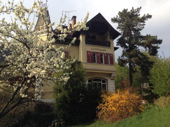 Ghastof Albergo Schlosshof