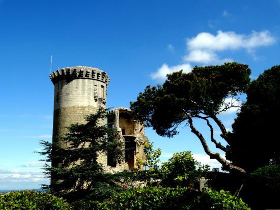 Chateau Feodal de Chateaurenard