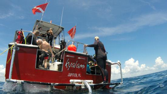 จูปีเตอร์, ฟลอริด้า: Fun on and off the boat with Capt Slurs Dive Charter