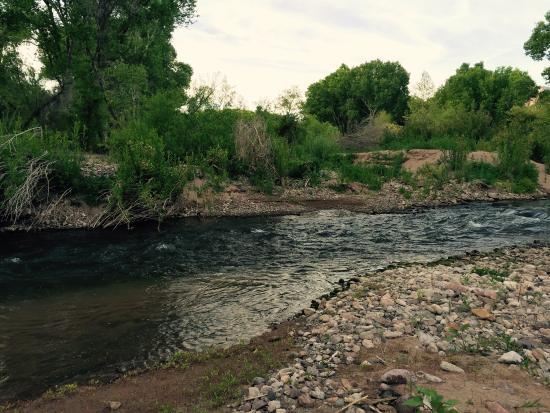 New Mexiko: South of Pleasanton at the birding area