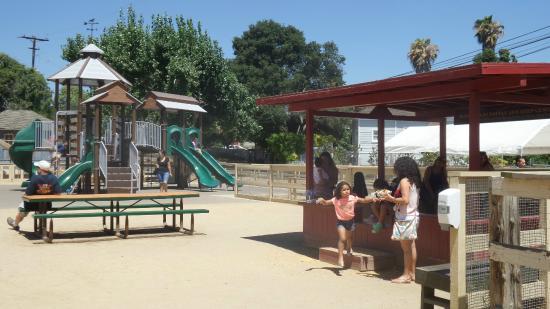 ZOOMARS Petting Zoo: Playground