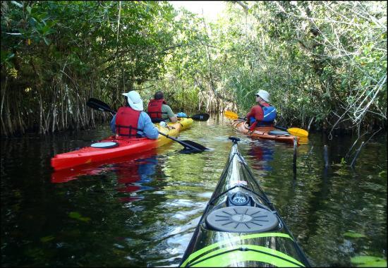 Everglades Kayak Company