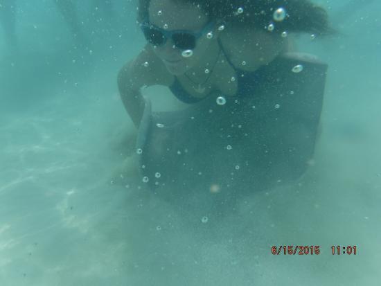 Sea Elements: photo1.jpg