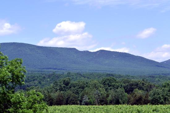 Star Tannery, VA: View of mountains