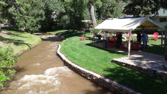 Green Willow Motel Cottages: picnicking under the canopy