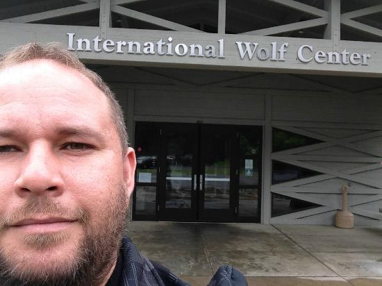 Ely, MN: At the International Wolf Center