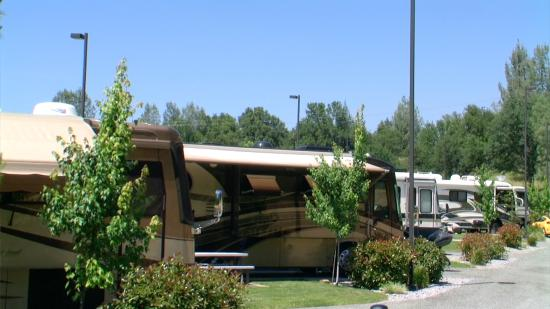 Premier RV Resorts: Large pull-thru sites